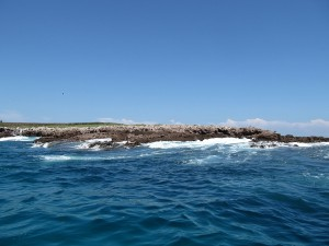 marietas-island-puerto-vallarta