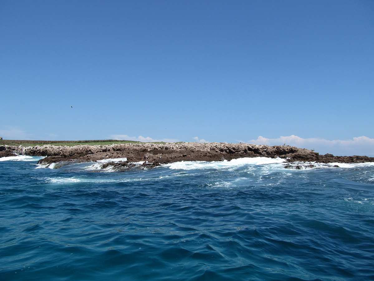 marietas islands puerto vallarta