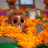 Day of the Dead, Puerto Vallarta