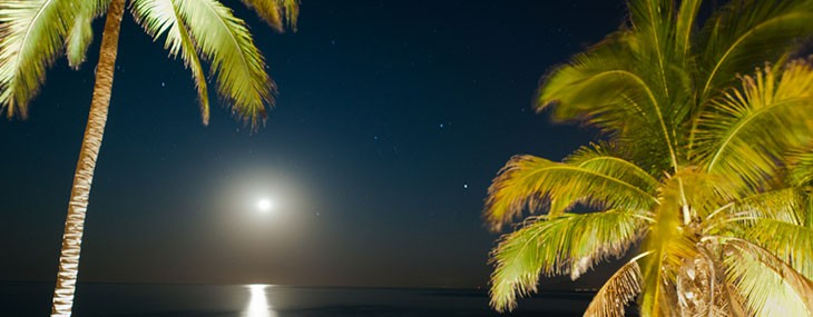 Stargazing in Puerto Vallarta
