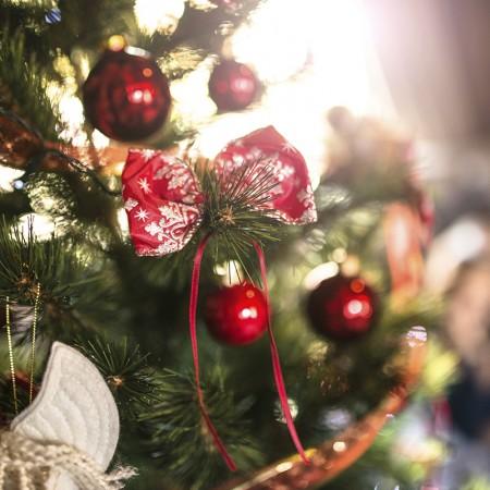 christmas_tree_vacation_paradise 2