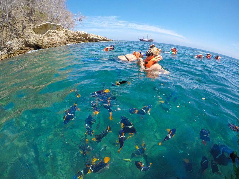 Snorkelling in Puerto Vallarta