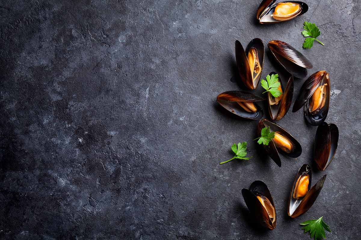 Cabo's Chocolate Clams