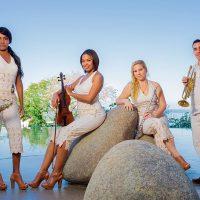 Discover Puerto Vallarta's Best Live Music