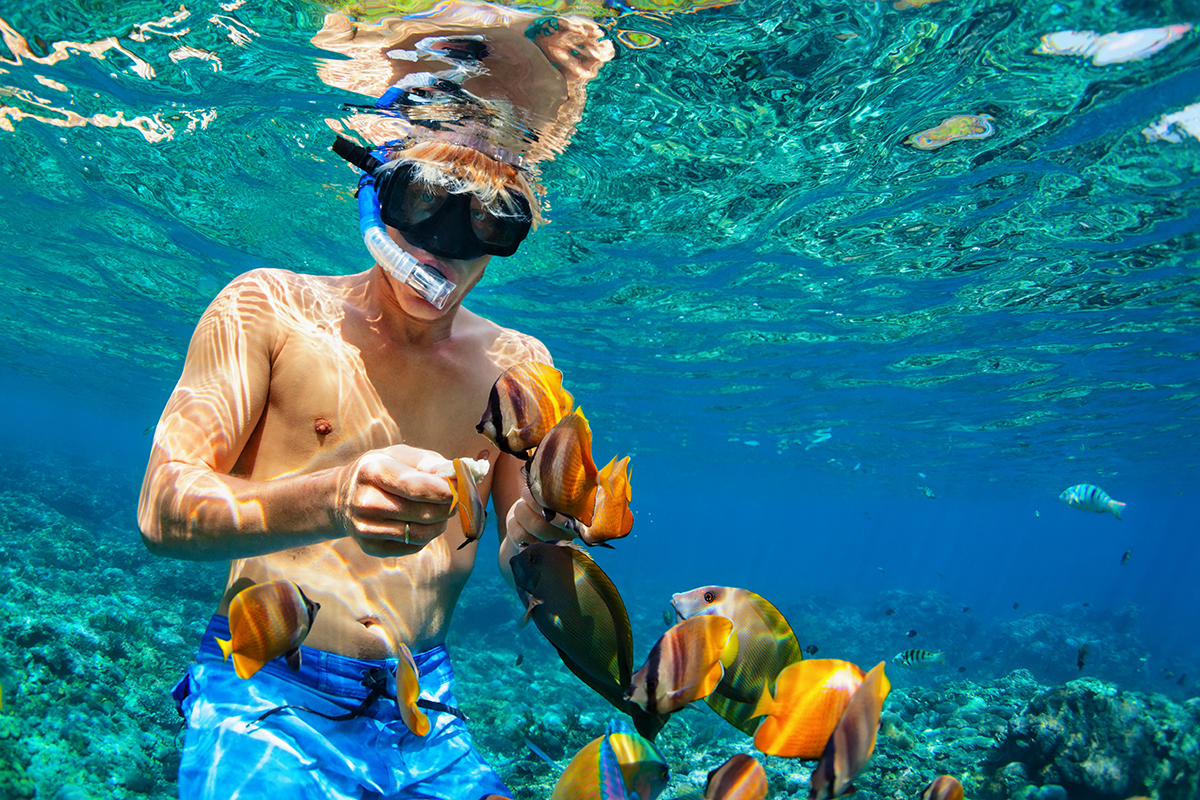 Snuba in Riviera Maya