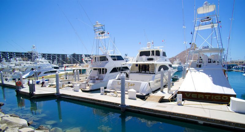Cabo San Lucas and its Famed Marina