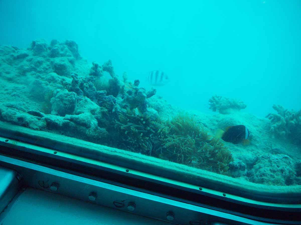 Cabo Submarine