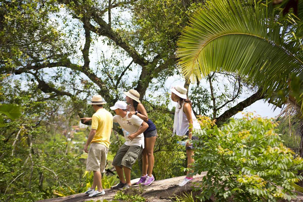 Jungle Trek Puerto Vallarta