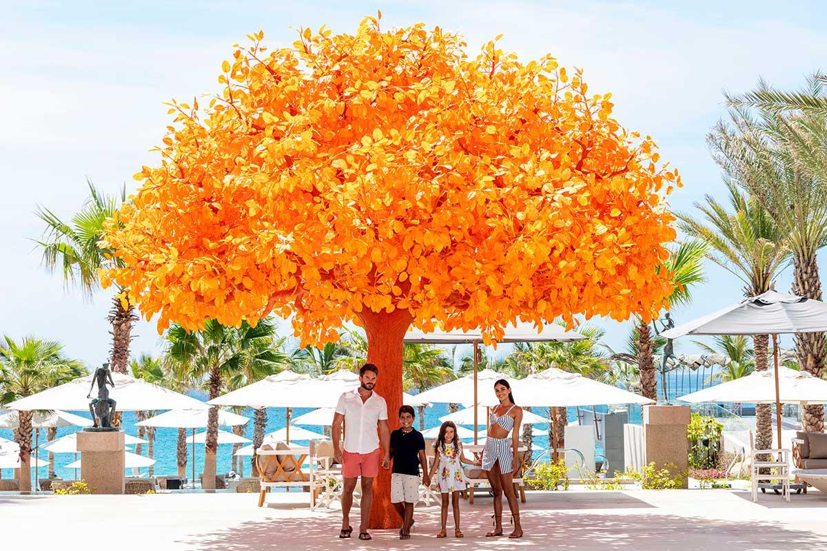 family at garza blanca orange tree