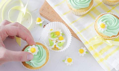 Cupcake Decoration