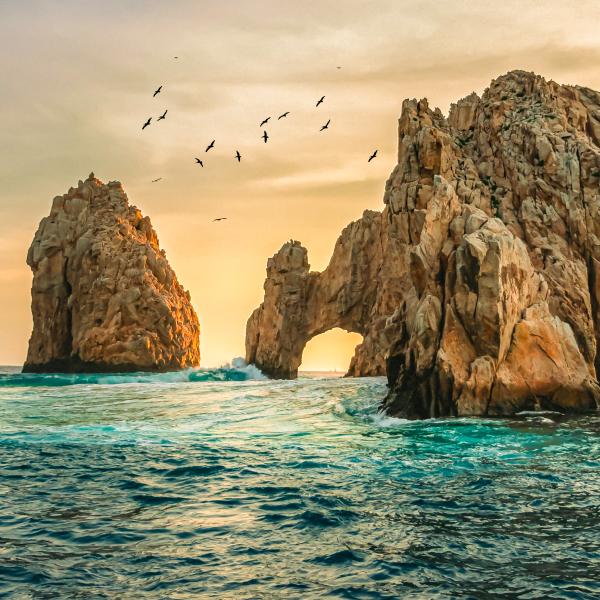 Discover Los Cabos in Garza Blanca Los Cabos