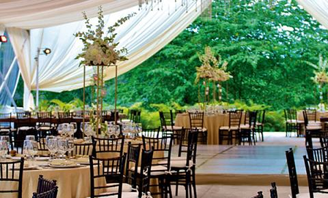wedding reception packages in puerto vallarta. Black Bedroom Furniture Sets. Home Design Ideas