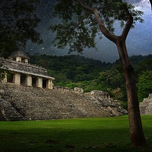 Pyramids ancient city of Palenque